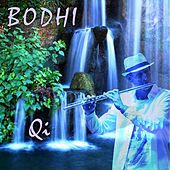 Play & Download Qi by Bodhi | Napster