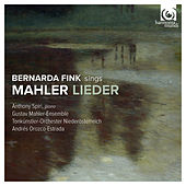 Mahler: Lieder by Various Artists