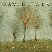 Play & Download Impressions by David Tolk | Napster