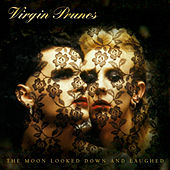 Play & Download The Moon Looked Down And Laughed by Virgin Prunes | Napster