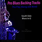 Pro Blues Backing Tracks (South Side Blues in G) [12 Blues Choruses With Tips for Alto Saxophone Players] by The Play Along Jam Band