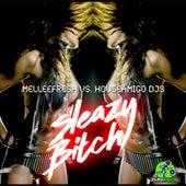 Sleazy Bitch (Melleefresh vs. HouseAmigo DJs) by Melleefresh