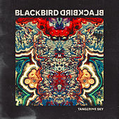 Play & Download Tangerine Sky by Blackbird Blackbird | Napster