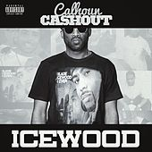 Play & Download Icewood by Cash Out | Napster