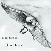 Play & Download Bluebird by Dan Cohen | Napster