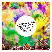 Play & Download Essential Festival Sounds 2014 - EP by Various Artists | Napster