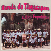 Play & Download Bailes Populares by Banda De Tlayacapan | Napster