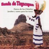 Play & Download Danza De Los Chinelos by Banda De Tlayacapan | Napster