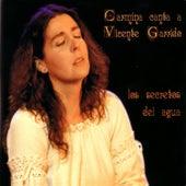 Play & Download Los Secretos Del Agua by Carmina Cannavino | Napster