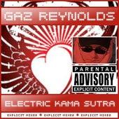 Electric Kama Sutra - Karma Farm Remixes by Gaz Reynolds