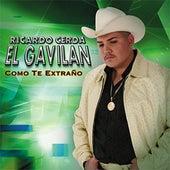 Play & Download Como Te Extraño by Ricardo Cerda | Napster