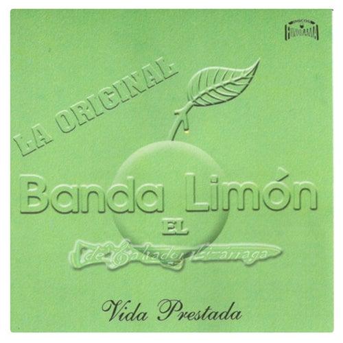Play & Download Vida Prestada by La Arrolladora Banda El Limon | Napster