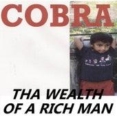 Tha Wealth of a Rich Man von Cobra