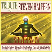 Tribute to Steven Halpern: Music Inspired By Steven Halpern's Deep Theta, Deep Alpha, Chakra Suite, & Music for Healing by Steven Snow