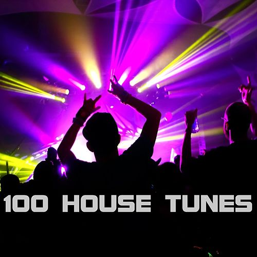100 House Tunes by Various Artists