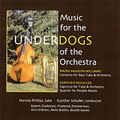 Play & Download Music for the Underdogs of the Orchestra by Various Artists | Napster