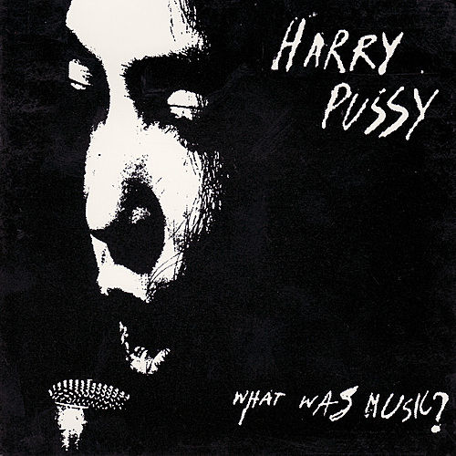 Play & Download What Was Music? by Harry Pussy   Napster