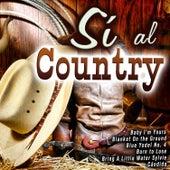 Sí al Country von Various Artists