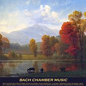 Play & Download Bach: Toccata and Fugue in D Minor, Air On the G String, Violin Concerto No. 1 & the Well Tempered Clavier - Pachelbel: Canon in D - Albinoni: Adagio - Vivaldi: Concertos - Walter Rinaldi: Adagio for Oboe & Orchestral Works - Mendelssohn: Wedding March by Various Artists | Napster
