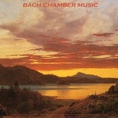 Play & Download Bach: Toccata and Fugue, Air On the G String & Violin Concerto No. 1 in A Minor - Pachelbel: Canon in D - Vivaldi: The Four Seasons - Albinoni: Adagio - Liszt: La Campanella - Mozart: Sonata Facile - Sinding: Rustle of Spring - Schubert: Ave Maria by Various Artists | Napster