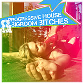 Progressive House & Bigroom Bitches by Various Artists