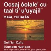 Maya Yucatán Nuevo Testamento (Dramatizada) - Maya Yucatan Bible (Dramatized) by La Biblia