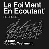 Fulfulde Adamawa Au Cameroun Nouveau Testament (Non-Dramatisé) Fulfulde Bible by The Bible