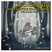 Play & Download Sleep Music with Natural Sounds: Moonlit Forest with Gentle Piano Music by Chris Conway | Napster
