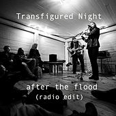 Play & Download After the flood (radio edit) by Transfigured Night | Napster