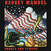 Play & Download Snakes and Stripes by Harvey Mandel | Napster