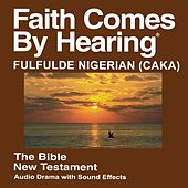 Play & Download Fulfulde Nigerian (Caka) New Testament (Non-Dramatized) by The Bible | Napster