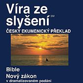 Play & Download Česká Ekumenickém Překladu Nového Zákona (Dramatizoval) - Czech Ecumenical Translation New Testament (Dramatized) by The Bible | Napster