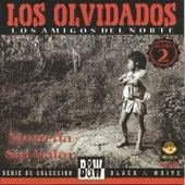 Play & Download Los Amigos del Norte by Los Olvidados   Napster