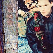 Play & Download Wild And Lonely by The Associates | Napster