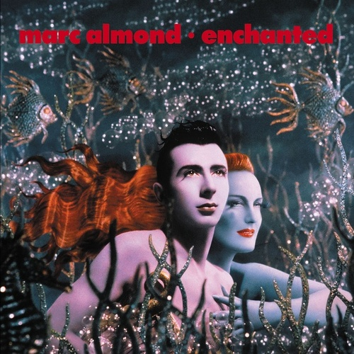 Play & Download Enchanted by Marc Almond | Napster