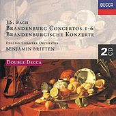 Play & Download Bach, J.S.: Brandenburg Concertos etc. by Various Artists | Napster
