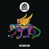 Born In México, Vol. 1 by Various Artists
