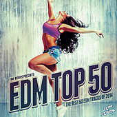 EDM Top 50 2014 by Various Artists
