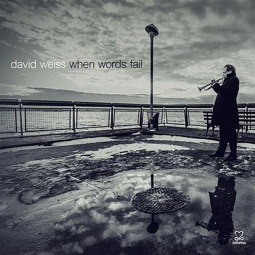 Play & Download When Words Fail by David Weiss | Napster