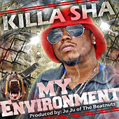 My Environment by Killa Sha