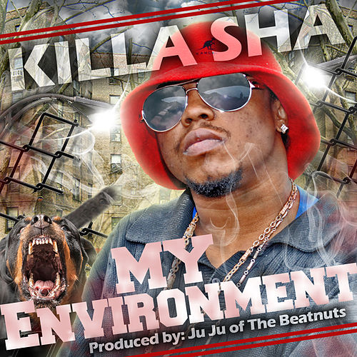 My Environment by Killa Sha