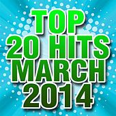 Top 20 Hits March 2014 by Piano Tribute Players