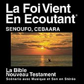 Play & Download Sénoufo Cebaara Du Nouveau Testament (Dramatisé) - Senoufo Cebaara Bible by The Bible | Napster