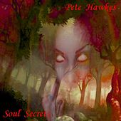 Play & Download Soul Secrets by Pete Hawkes | Napster