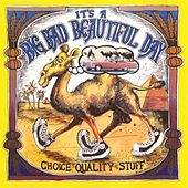 Play & Download Choice Quality Stuff/Anytime by It's A Beautiful Day | Napster