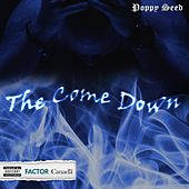 The Come Down by Poppyseed