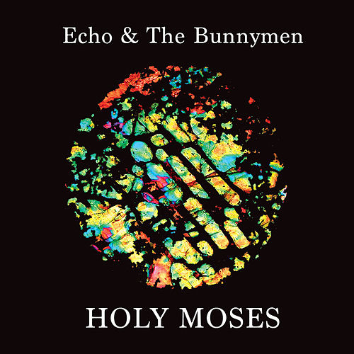 Holy Moses de Echo and the Bunnymen