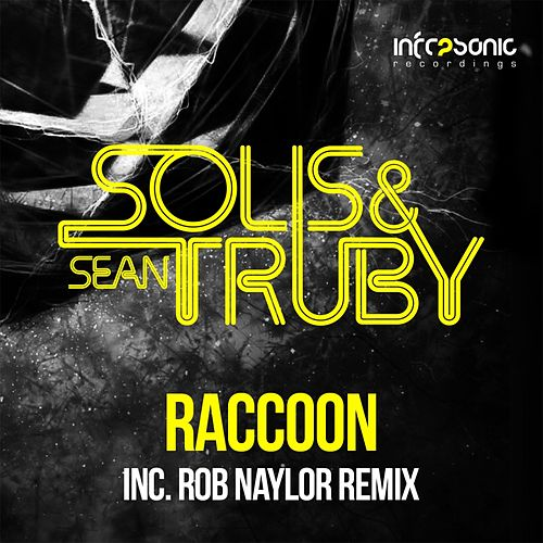 Play & Download Raccoon by Solis | Napster