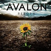 Reborn (Performance Tracks) by Avalon