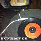 True Funk by FunkMule